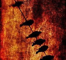 Prophets by Andrew Paranavitana
