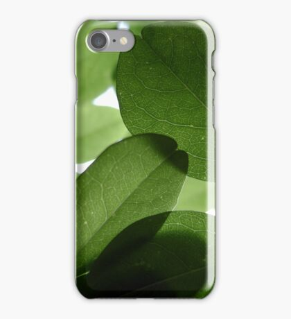 It ain't easy being Green iPhone Case/Skin