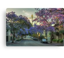 Jacarandas in Bloom Canvas Print