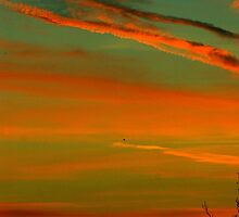Arundel's January Sunrise by Charlotte Jarvis