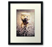 Danbo and Camera Framed Print