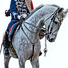 The Guard Hussars  by imagic