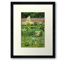 A suffolk garden Framed Print