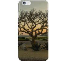 QUIVIRA iPhone Case/Skin