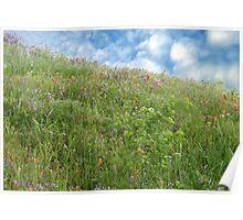 Hillside In Springtime Poster