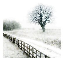Snow flurries  Photographic Print