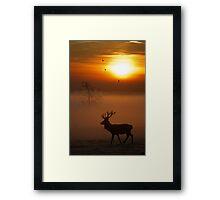 Stag sunrise 2 Framed Print