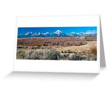 Willow Flats Greeting Card