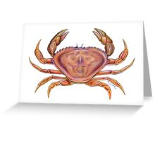 Dungeness Crab (Metacarcinus magister) Greeting Card