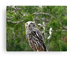 Murder Owl Canvas Print