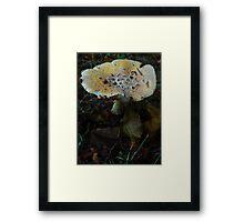 Mushroom Kingdom (1324) Framed Print