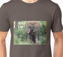 The Elephant {Loxodonta Africana} Unisex T-Shirt