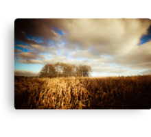 Home Woods Canvas Print