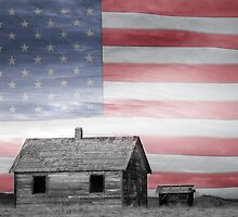 Rustic America by Bo Insogna