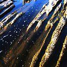 Water Chanels by Daniela Weil