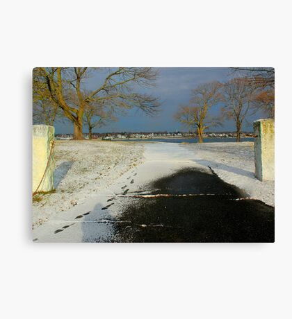 Just the right amount Canvas Print