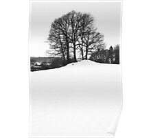 Wintery scene in the Lake District Poster
