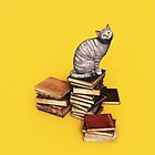 British Cat on a stack of books iPhone/iPod case by Roberta Angiolani