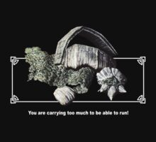 Skyrim - Carry Too Much to Run! by Kimberly1337