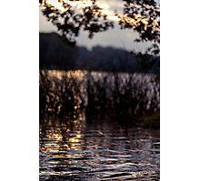 Autumn's tender light Photographic Print