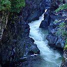 Sooke River Gorge by Jann Ashworth