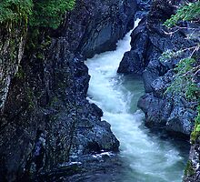 Sooke River Gorge by Jann Ashworth