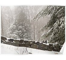Winter in New England Poster