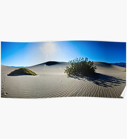 Bathed in Morning Light - Death Valley National Park, California Poster