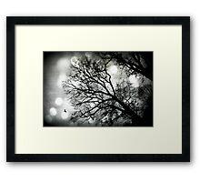A Tree grows in Marietta Framed Print