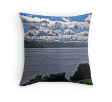 What a view. Throw Pillow