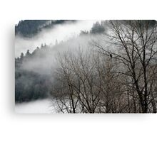 Skagit river eagle Canvas Print