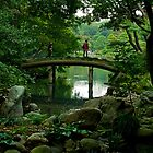 A view of a bridge with a view - Japan by Norman Repacholi