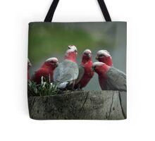 Gossiping Galahs Tote Bag
