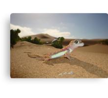 Gecko on Desert Dune - Namibia Canvas Print