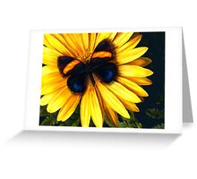 Butterfly on Yellow Greeting Card