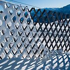 Melting snow from a fence by Rob Schoon