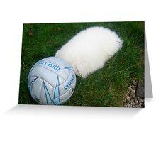 'HEADABALL' - OUR HEADLESS PUPPY Greeting Card