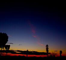 Uluru Dusk by Shaynelee