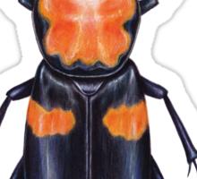 American Burying Beetle Sticker