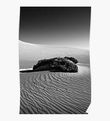 Swirl - Death Valley National Park, California Poster
