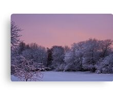 Snow Scene At Sunrise Canvas Print