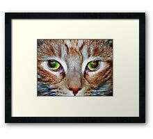 Microcosm - Parallel Universe Framed Print