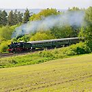 Steam train in Franconia, Germany. by David A. L. Davies