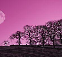 Tree line full moon by kevindobie