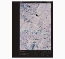 USGS Topo Map Washington State WA Cliff Ridge 20110428 TM Inverted Kids Tee