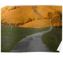 Long Winding Road Poster