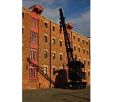 Large crane small shadow Photographic Print