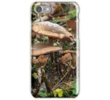toadstool Family iPhone Case/Skin