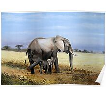 African Mother Elephant with its child  Poster