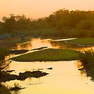 Sunrise on the sand river by jozi1